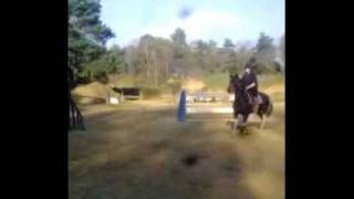 My 'rubbish' horse jumping 3ft (new record)