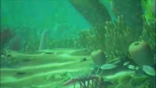 The Cambrian Sea