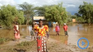 Hundreds of households displaced by floods in Ngarmara ward, Isiolo County