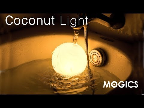 MOGICS Coconut Light - The Most Adaptable Light EVER