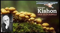 Ephraim Kishon - Der Glückspilz - Hörbuch