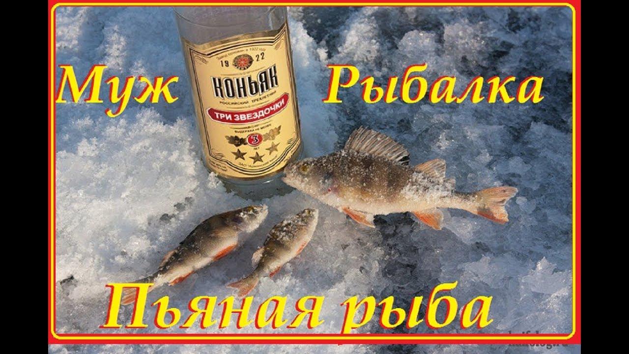 Приколы 2019 Приколы на рыбалки
