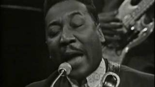 Muddy Waters . I