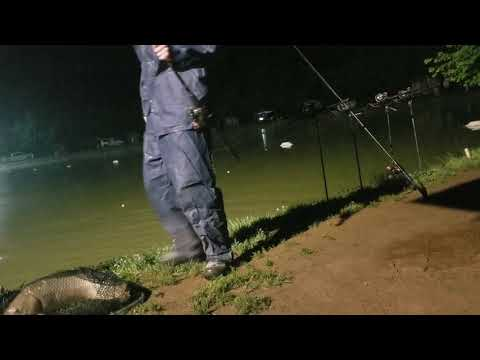 South Davidson Carp Lake $50  Every 20 Minutes