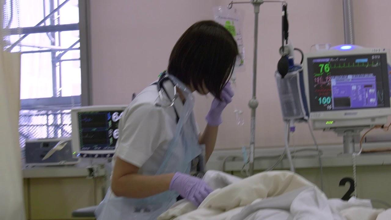 大学 八王子 コロナ 東海 病院