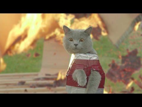 Iron Cat 2