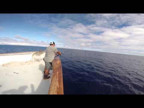 Long Range Trip on the Red Rooster 3
