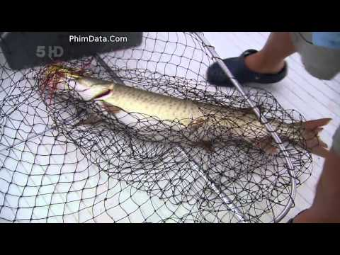 Robsons Extreme Fishing Challenge S01E02 720p 001 mp4 NEW
