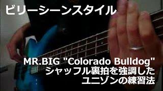 【ビリーシーンスタイル】MR.BIG「Colorado Bulldog」のシャッフル裏拍を強調したユニゾンの練習法 Billy Sheehan