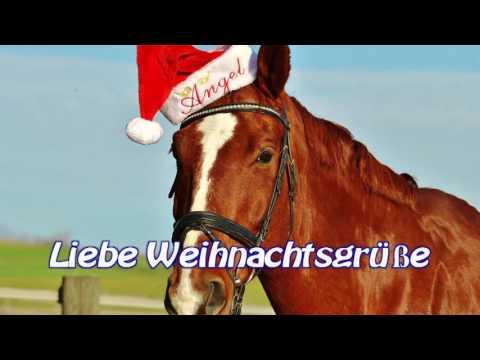 Weihnachtsgrüße 2016: Liebe Weihnachtsgrüße vom Weihnachtspferd