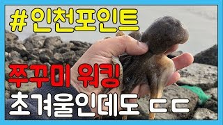[TV바이트] 인천 쭈꾸미 워킹 포인트 송도신항 초겨울이지만 ㄷㄷㄷㄷ