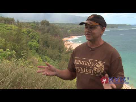 Hawaii Artist Patrick Ching on Teaching Painting Techniques - KVIC-TV, myKauai.com [Art]