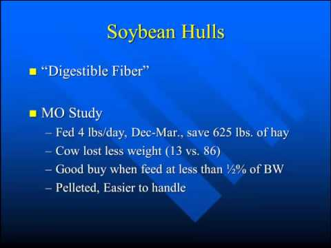 Feeding Soybeans and Soybean By-Products