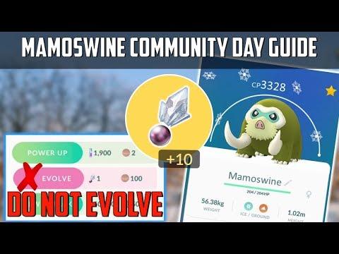 Mamoswine Community Day Guide In Pokemon Go! thumbnail