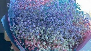 اغنية تركية مشهورة   زهرة من الجنة