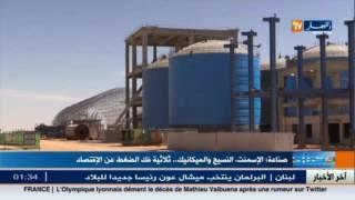 شاهد كيف أصبح الاقتصاد الجزائري بعد انهيار أسعار البترول