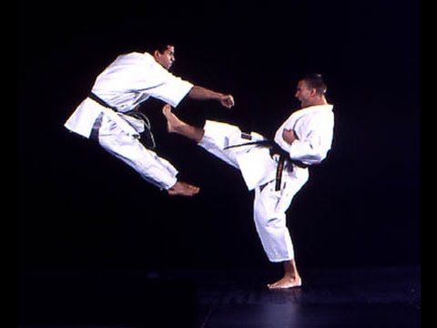 All-Karate.com - Front kick (mae geri)