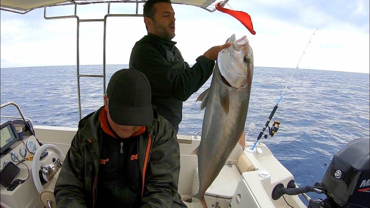 Dev Balığın Kaç Kilo Geldiğine İnanamayacaksınız !! / Giant Amberjack