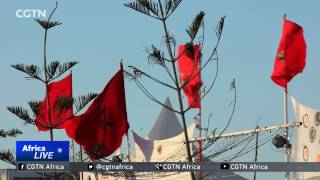 Video Morocco Music Festival: Coastal city brought to life by traditional 'Gnawa' music download MP3, 3GP, MP4, WEBM, AVI, FLV Agustus 2018