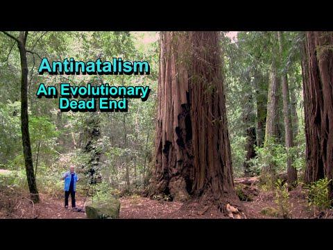 Antinatalism: An Evolutionary Dead End