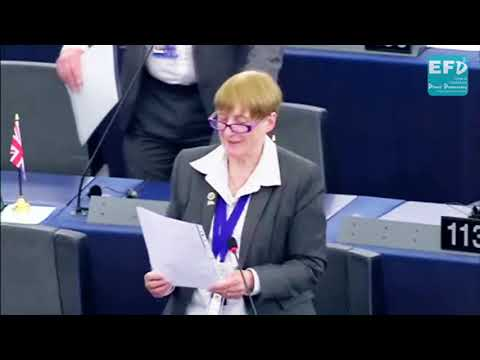 EU objective towards the final de-industrialisation of Europe - Julia Reid MEP