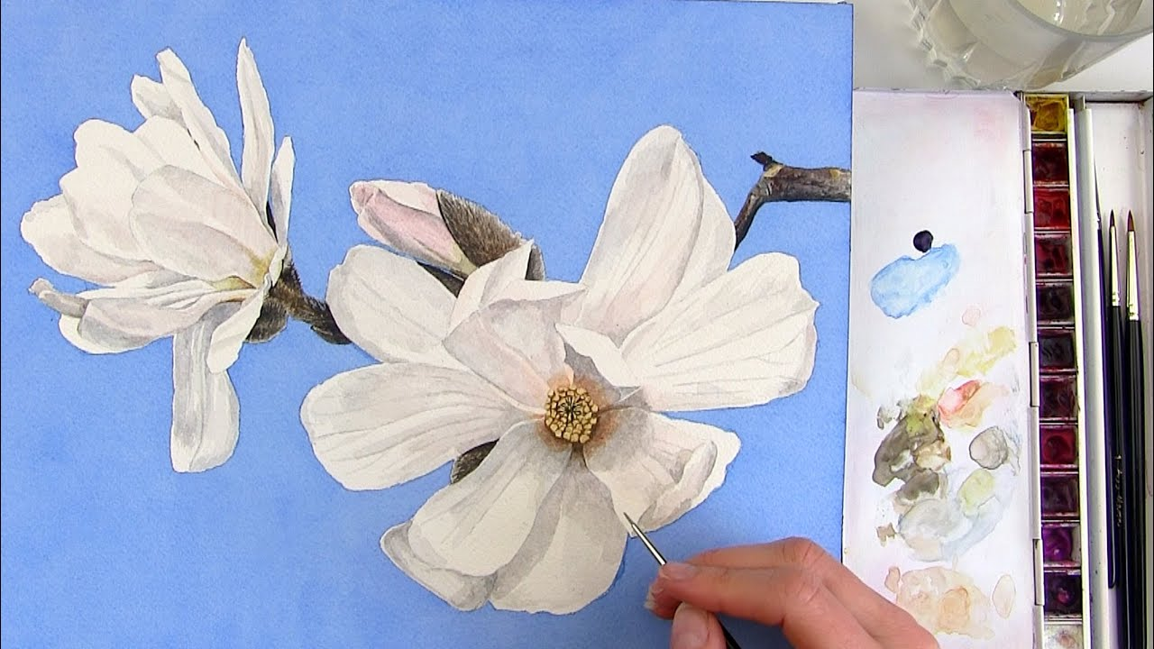How To Paint A Realistic White Magnolia Flower In Watercolor Youtube