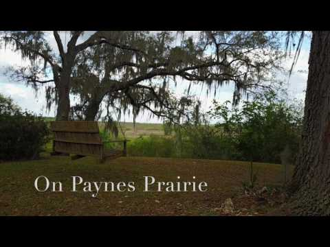 Estate Home on Paynes Prairie in Gainesville, FL - Absolute Auction