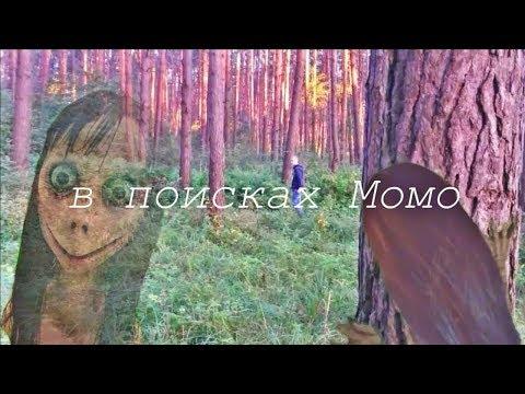 В поисках момо (жанр: ужасы, комедия)18+