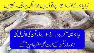 History Of Dragons In Urdu - Purisrar Dunya - Urdu Informative Documentary