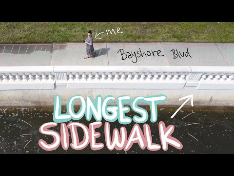The importance of daily walks: walking on Bayshore Boulevard, the longest sidewalk in the world