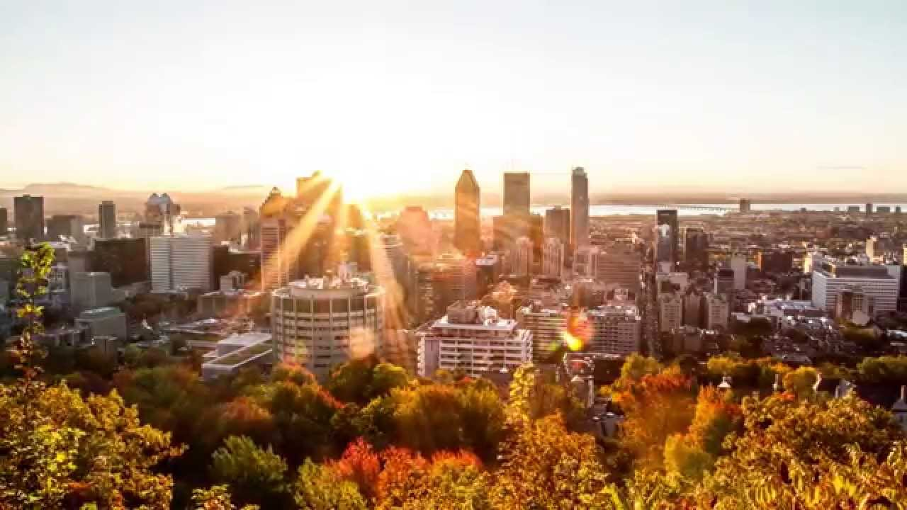 mount royal black personals Mont-royal drone footage in montreal 4k - phantom 4 - duration: 3:55 realmont - montreal 3,638 views 3:55 how to purchase a 3 day transit pass (english) in montreal, quebec - duration: 2:56.