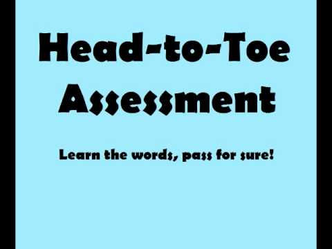 Ultimate Guide to Head-to-Toe Physical Assessment