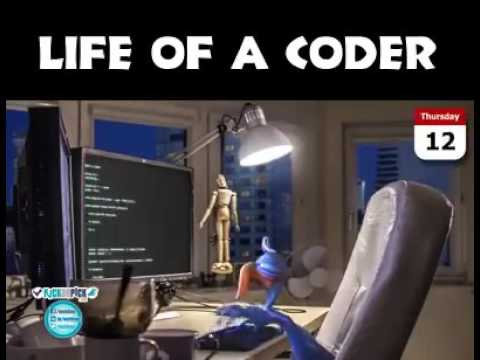 Coder's life, the funniest!!!