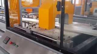 Poland Customer--pvc Wood Plastic Wall Panel Production Machine