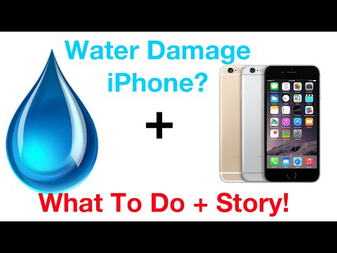 Dropped iPhone 6 in Water? | What To Do + Story