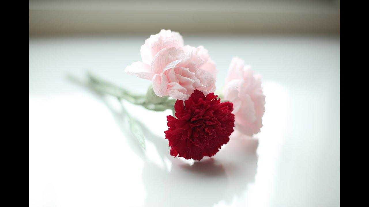 How to make paper flowers   Carnation FREE  SO EASY     YouTube