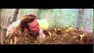 Ace Ventura When Nature Calls Hungry Fella