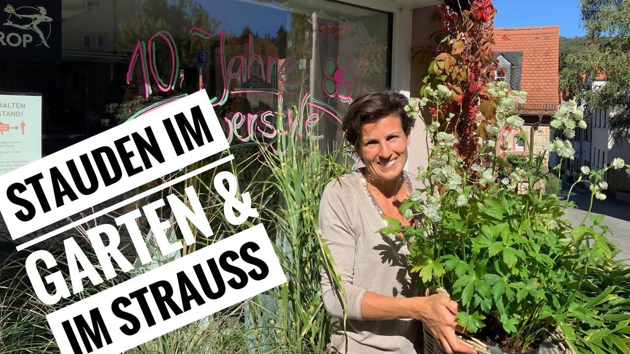 Im Garten gepflanzt- im Strauss gebunden: Staude Astrantie und  10 Jahres-Jubiläum FlowerStyle DIY