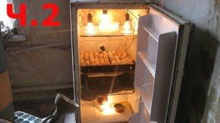 Простой домашний инкубатор своими руками для яиц. Ч.2
