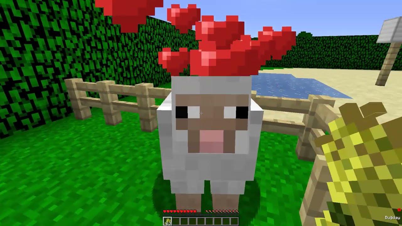 KURBANLIK KOYUN KIZ EV KAFAYA SALDIRDI! 😱 -Minecraft