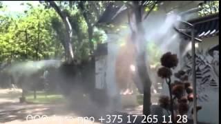 видео система тумана Tecnocooling