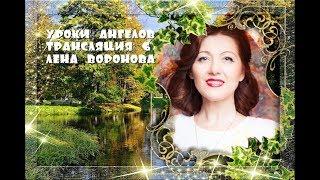 Трансляция 6 - полная версия/Лена Воронова