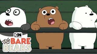 Wir Nackten Bären | Niedliche Baby-Bären Zusammenstellung (Hindi) | Cartoon Network
