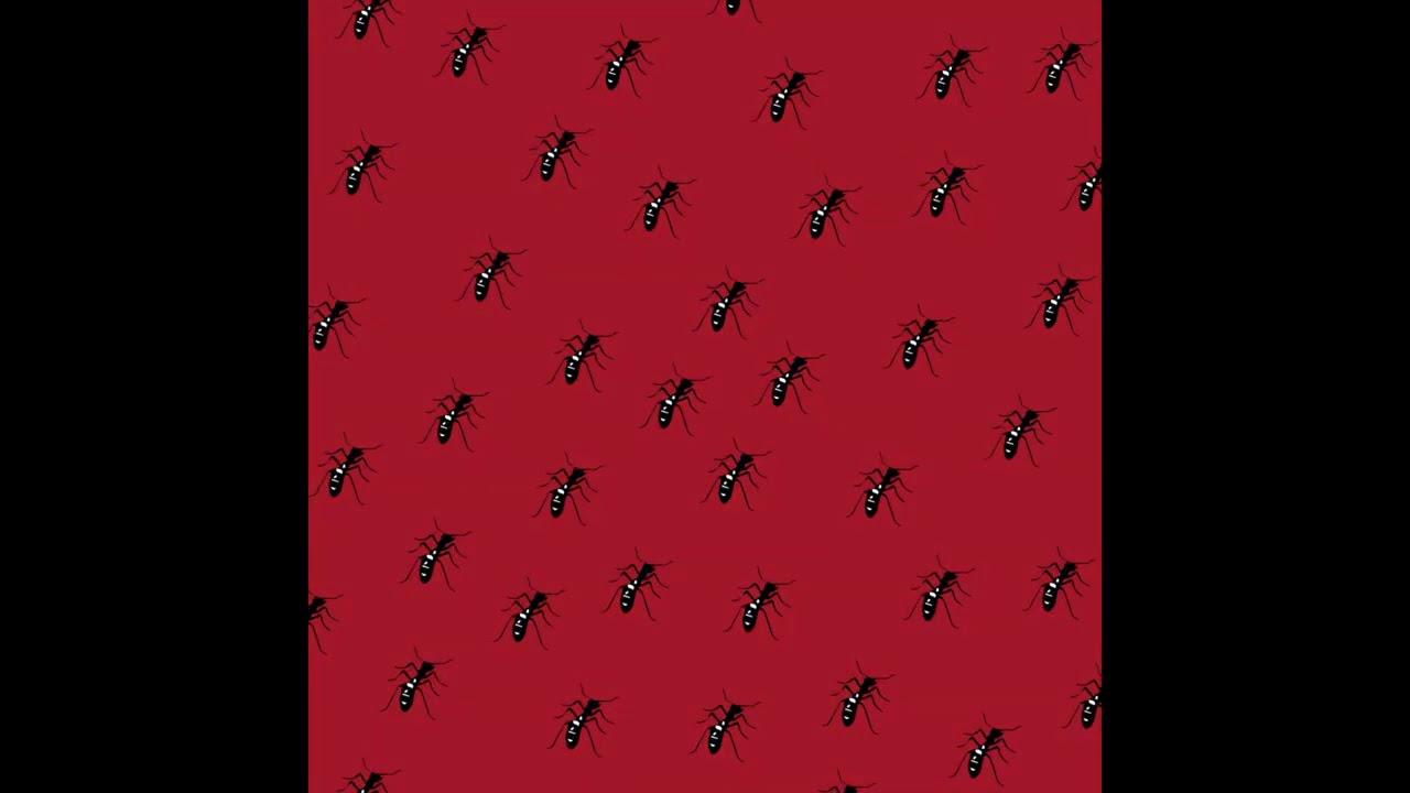 <개미> 디지털 싱글 / 27 Oct, 2020