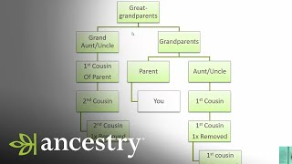 What is a First Cousin Once Removed?