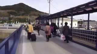 花粉症の無い 的山(あづち)大島ってどんな島? 2014.3