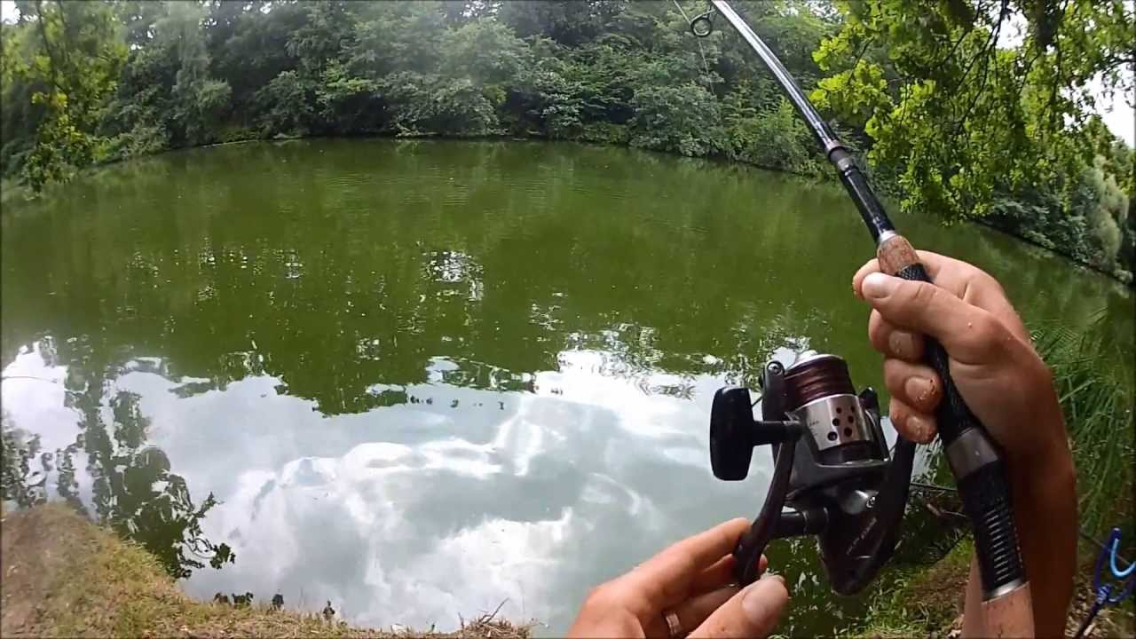 feeder fishing with boilies for carp
