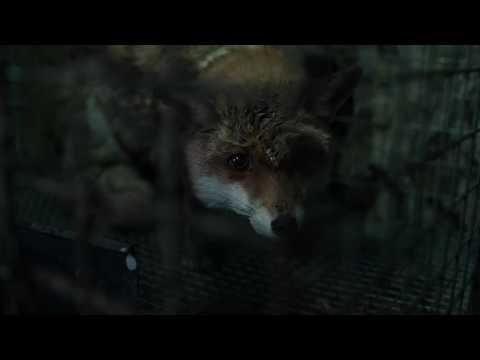 SPOOR (POKOT) - trailer EN