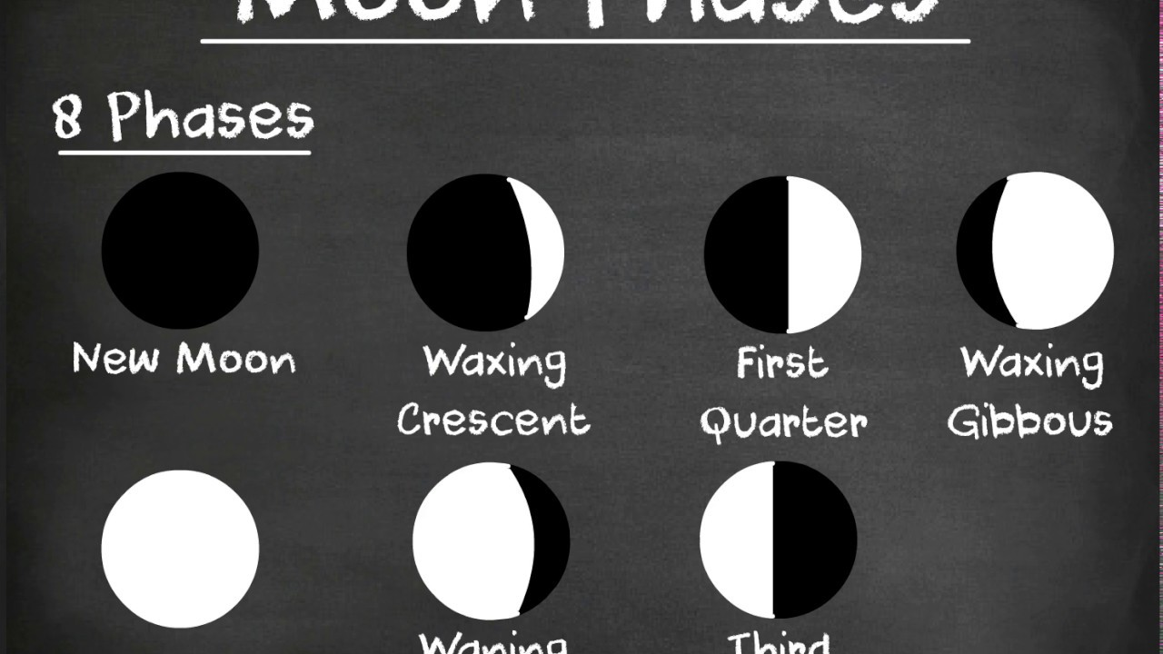 phases and eclipses of the moon A b how long does it take for the moon to revolve around the earth 273 days: what causes phases, eclipses, and tides they are caused by the changing relative positions of the moon, earth, and sun.
