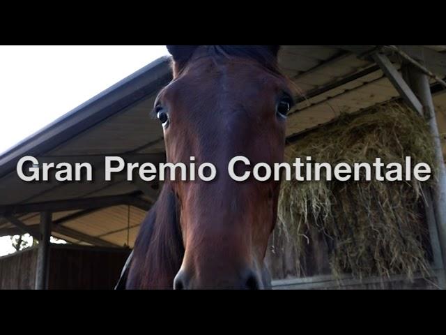 Ippodromo di Bologna   Presentazione Gran Premio Continentale trofeo Tomaso Grassi 2021